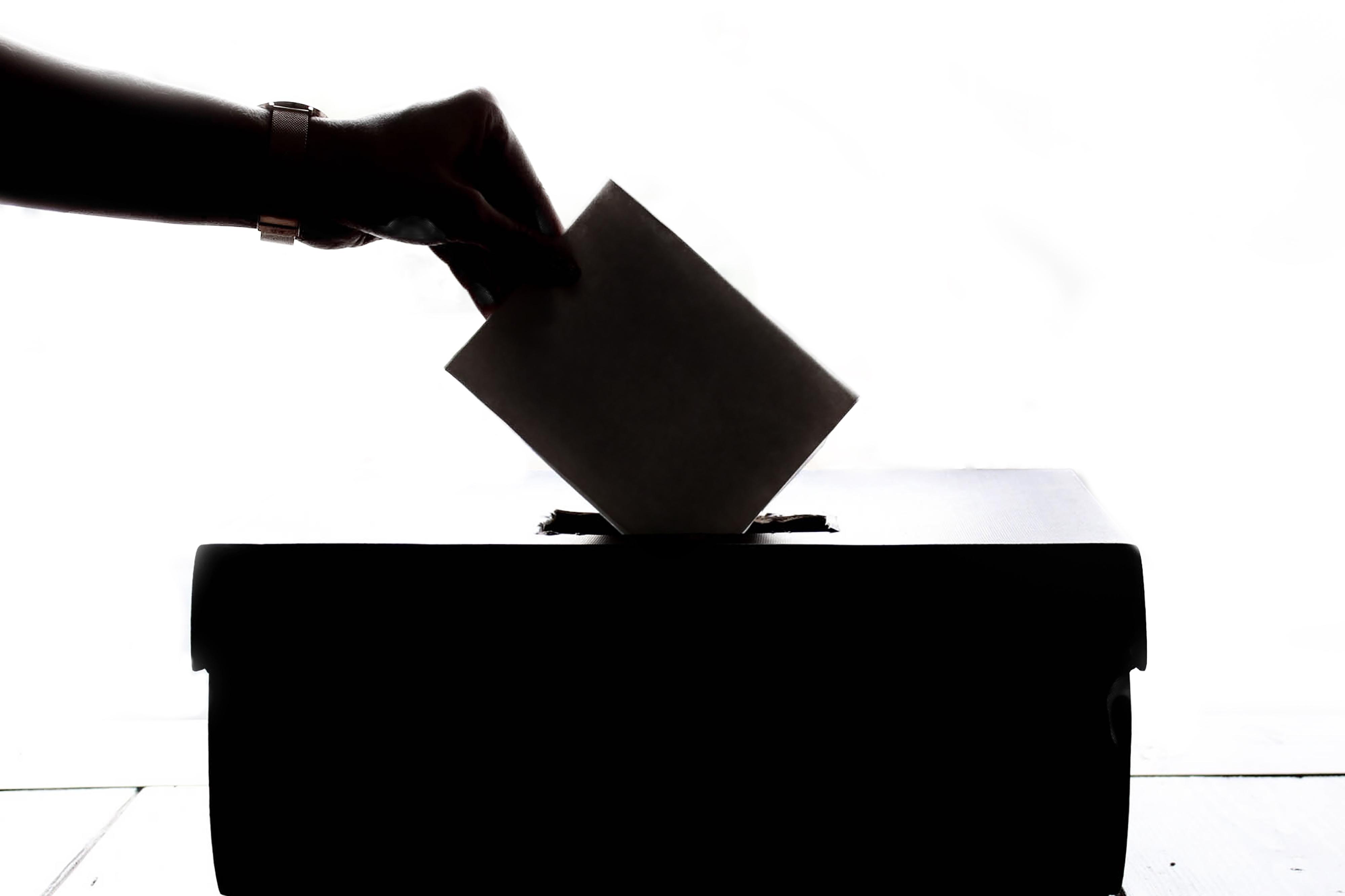 Wybory do Powiatowej Rady Działalności Pożytku Publicznego