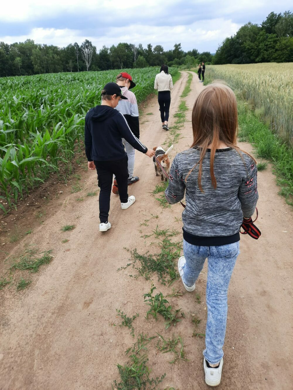 Dzień Psa – odwiedziny w Schronisku