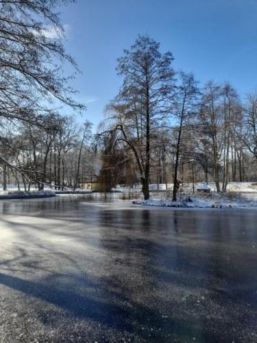 Wrześniewska J Park Zgorzelec